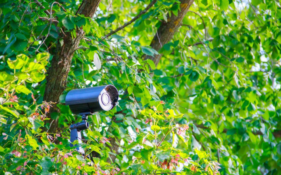 Best Hidden Camera for Home Surveillance